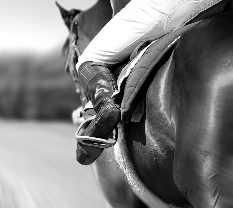 Close up of a jockey on a horse.