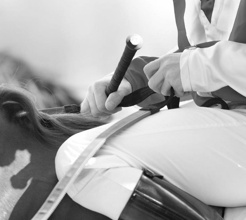 Close up on a jockey sitting on a horse.